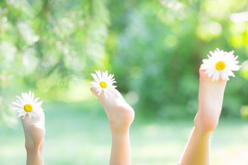 Cheerful photo of toes holding daisies
